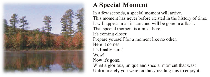 specialmoment.jpg